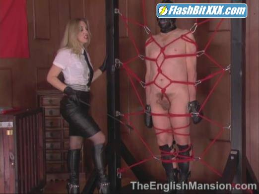 Pegged in Her Web [SD 480p]